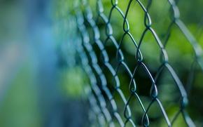 Картинка макро, сетка, забор, решетка