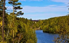 Картинка дорога, лес, мост, река, поезд, железная дорога, Россия, Иркутск