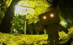 Картинка глаза, свет, деревья, парк, листва, ужас, robot, danbo, Danboard, box, toy