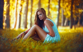Картинка Girl, Light, Nature, Beautiful, Model, Color, Sunset, Beauty, Yellow, Forest, Trees, Natural, Blonce, Lindsey W