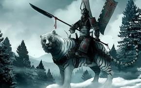 Обои воин, снег, Тигр