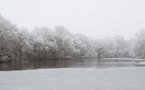Картинка river, trees, winter, snowing