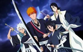 Картинка insignia, girl, sword, game, emblem, Bleach, anime, katana, man, boy, captain, hero, asian, Kurosaki Ichigo, …