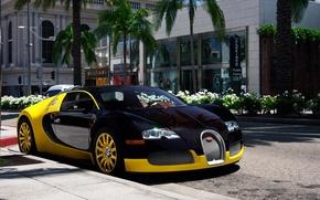 Картинка Бугатти, Bugatti Veyron, California, 16.4