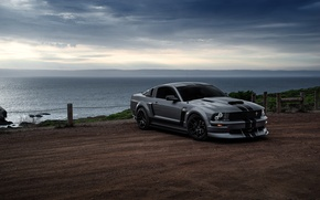 Картинка Mustang, Ford, Muscle, Car, Front, Grey, San Francisco, Boss, Sea, Collection, Aristo, 281