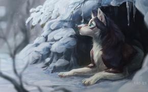 Картинка зима, снег, природа, собака, нора, by Vao-Ra