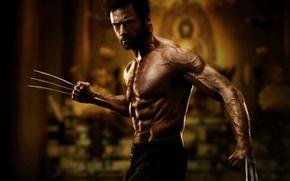 Обои Росомаха, Хью Джекман, Hugh Jackman, Logan, The Wolverine, Wolverine