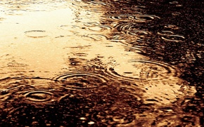 Картинка вода, капли, круги, дождь, разводы