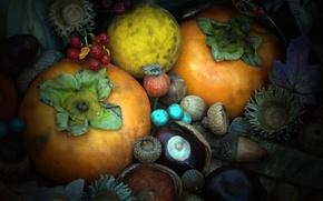 Картинка осень, текстура, орех, плод, желудь, каштан, хурма