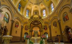 Картинка цветы, церковь, витражи, купол, алтарь