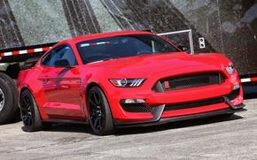 Картинка Mustang, Ford, Shelby, GT350R, Raceway, Grattan