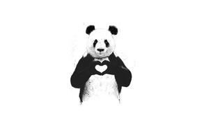 Картинка животное, panda, сердце, minimalism, милота, панда, любовь, love, animal