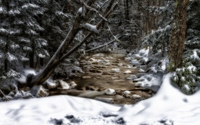 Картинка снег, деревья, ручей, New Hampshire