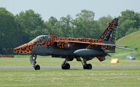 Картинка Jaguar, истребитель, бомбардировщик, аэродром, «Ягуар»