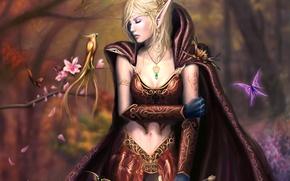 Картинка цветы, плащ, арт, украшения, деревья, девушка, фэнтези, меч, птица, эльфийка, лес