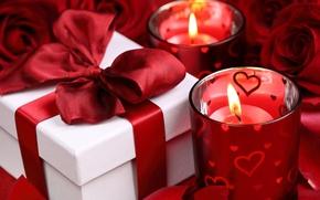 Обои цветы, розы, красные розы, valentine's day
