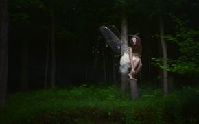 Картинка лес, девушка, бабочка
