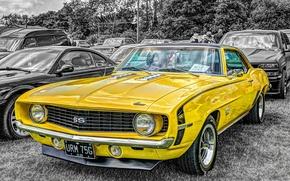 Обои 1969, chevrolet camaro, 350ss,  мускул кар