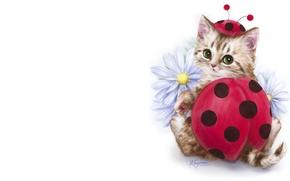 Картинка арт, котёнок, детская, костюмчик, Каёми Хараи
