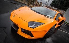 Картинка Lamborghini, Beach, LP700-4, Aventador, Newport