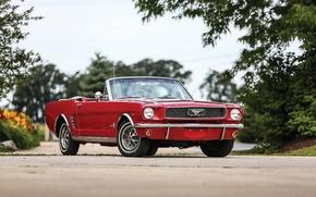 Обои форд, 1966, мустанг, Mustang, Ford