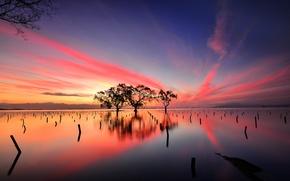 Обои небо, облака, деревья, озеро, отражение, вечер, зарево