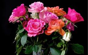 Картинка фон, розы, букет, colorful, розовые, красивые, Roses, background, bouquet