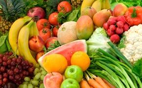 Обои лето, цвета, фрукты, еда, овощи