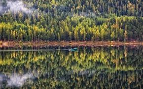 Картинка лес, вода, деревья, пейзаж, природа, отражение, лодка