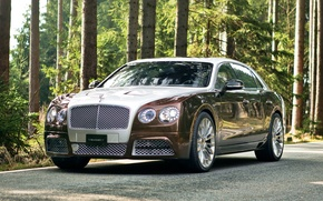 Картинка continental, bentley, mansory, flying_spur_7