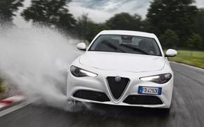 Картинка Белый, Лужа, Alfa Romeo, Альфа Ромео, Giulia, Фас