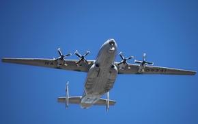 Обои Cock, Антей, россия, Ан-22, ввс, тяжелый, Антонов, транспортный, самолёт, турбовинтовой