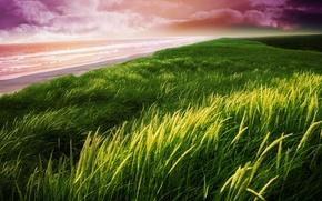 Картинка пляж, небо, трава, природа, берег, пейзажи