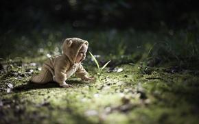 Картинка природа, малыш, ребёнок