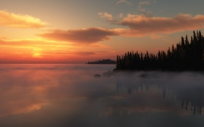 Обои туман, деревья, озеро, закат