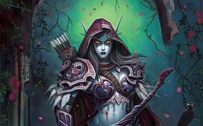 Картинка цветы, ночь, эльф, розы, доспехи, лук, фэнтези, WoW, World of Warcraft, fantasy, стрелы, elf, Lady …