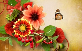 Картинка цветы, природа, ягоды, коллаж, бабочка, желудь
