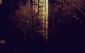Картинка деревья, city, город, парк, настроение, нью-йорк, new york, обои на рабочий стол, картинки для рабочего …