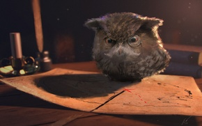 Картинка сова, карта, очки, fantasy, art, owl
