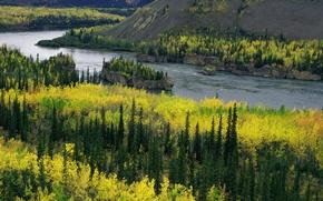 Картинка река, yukon, river