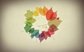 Картинка осень, листья, минимализм