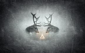 Картинка животные, текстура, черно-белое, олени, треугольник