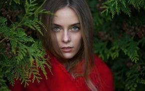 Картинка взгляд, девушка, ветки, лицо, милая, модель, портрет, light, red, шатенка, красивая, прелесть, nature, накидка, eyes, …