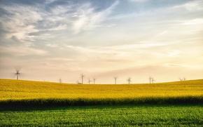 Обои лето, поле, рапс, ветряки, пейзаж