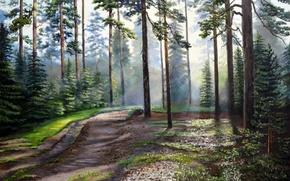 Картинка дорога, лес, лето, солнце, лучи, свет, деревья, пейзаж, масло, живопись, холст, тропинка, кроны, Луценко, лесная …
