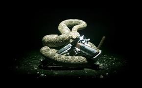 Обои стиль, hitman, хитман 5, SilverBaller, hitman 5, absolution, хитман, змея, пистолет