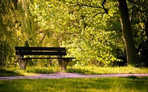 Обои лето, парк, скамья