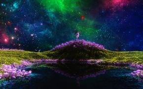 Картинка поле, трава, кот, девушка, звезды, цветы, фантазия, шарик