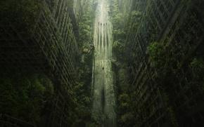 Картинка дорога, деревья, город, апокалипсис, пустошь, Wasteland 2