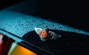 Обои Bentley, логотип, Бентли, капли